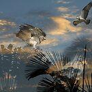 Unseen Worlds by byronbackyard