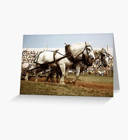 Horse Draft at Goshen Fair Greeting Card