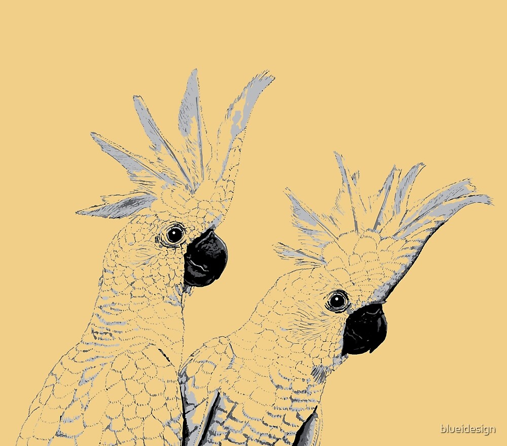 Sulphur Crested Cockatoos Black and White by blueidesign