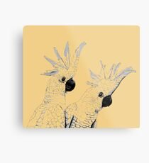 Sulphur Crested Cockatoos Black and White Metal Print