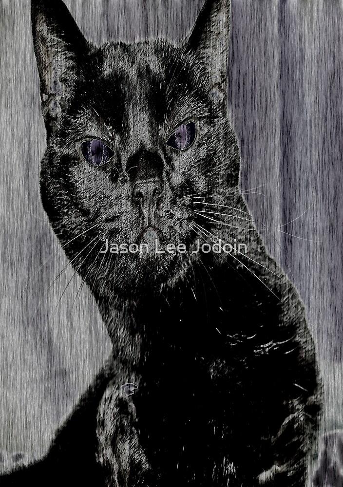 Space Cat by Jason Lee Jodoin