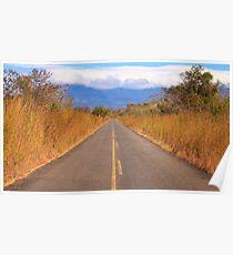 Guanacaste Road Poster
