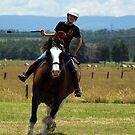 Clydesdale Driving Day, Trafalgar, Gippsland by Bev Pascoe