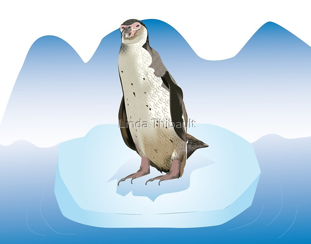 Pinguin on a ice block by Linda Thibault