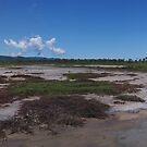 Mudflat vista by Jayson Gaskell