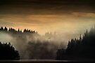 Land of the Raptors 2... Loch Ard, Trossachs by David Mould
