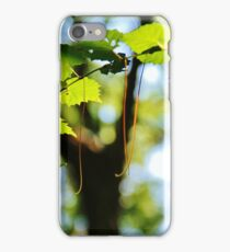 Summer Foliage iPhone Case/Skin