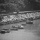 Fishing Boats in Lantau Hong Kong - Black and White by Richie Wessen