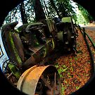 Antique Mossy Tractor by Clayton Bruster