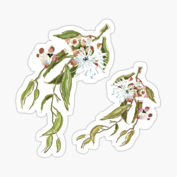 Cup Gum - Australian Eucalyptus flower Sticker