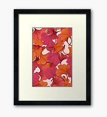 Autumn Ginkgo Leaves Framed Print