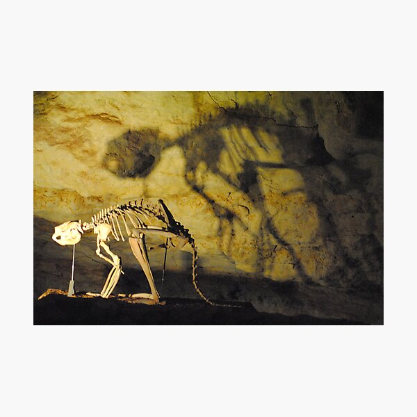 Dinosaur Caves - Thylacoleo - Naracoorte, South Australia Photographic Print