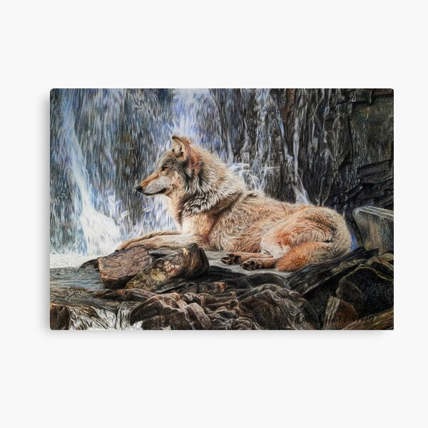 Grey wolf in front of a waterfall Canvas Print