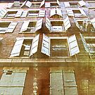 old factory windows by olga  hutsul