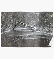Snowy Clarks Creek Poster