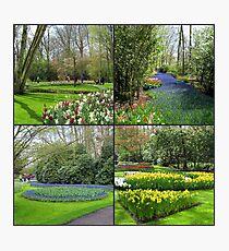 A Dutch Spring Collage - Keukenhof Gardens Photographic Print