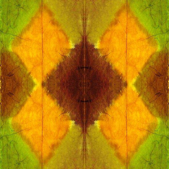 Tie Dye Dreamtime by Scott Mitchell