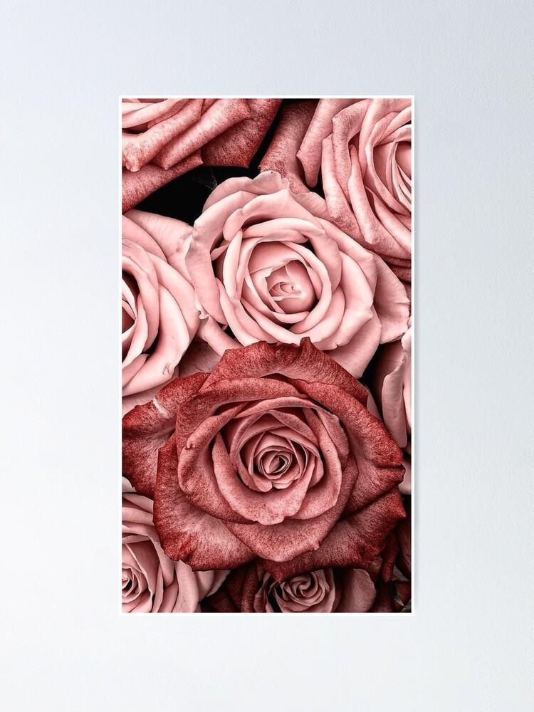 Alternate view of Vintage roses Poster