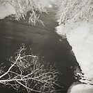 Winter Scene #16 by Amy E. McCormick