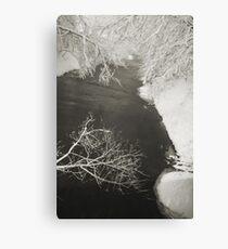 Winter Scene #16 Canvas Print