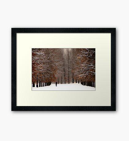 A Wide Solitude Framed Print
