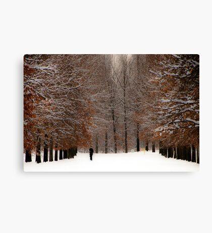 A Wide Solitude Canvas Print