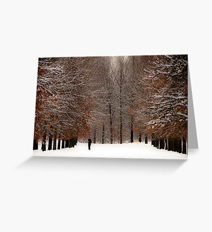 A Wide Solitude Greeting Card