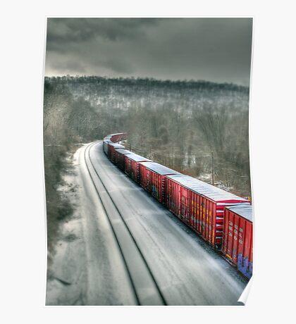 The Winter Run Poster