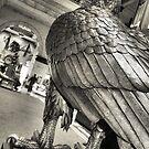 Philadelphia Eagle by Amy E. McCormick
