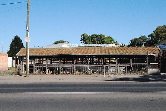 Cattle Sale Yards 2010 - Mernda, Victoria by Heather Samsa