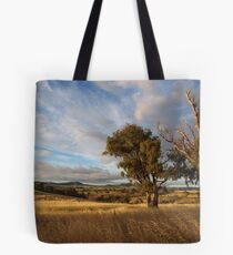 When The Light Was Right ! Tote Bag