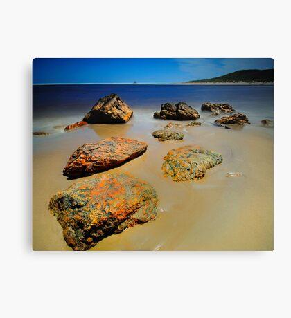 Arthur River Rocks Canvas Print