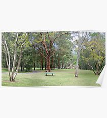 Trees in Georges River Poster