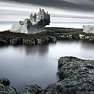 Lobster Palace by Luis Ferreiro