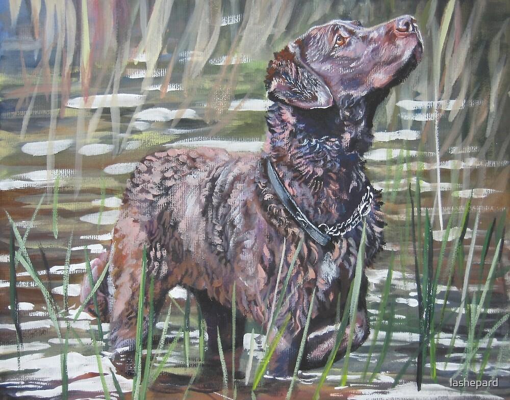 Chesapeake Bay Retriever Fine Art Painting by lashepard