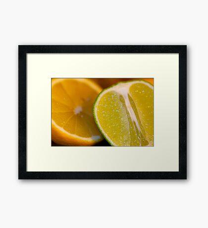 Orange and Lime Framed Print