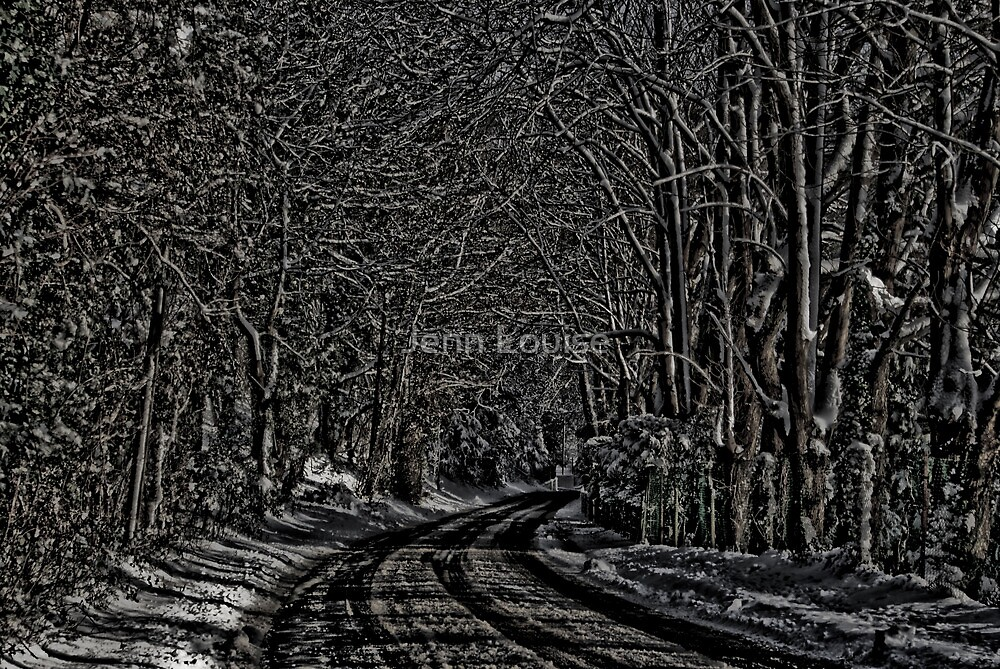 These Woods I Walk Through by Jenn Louise