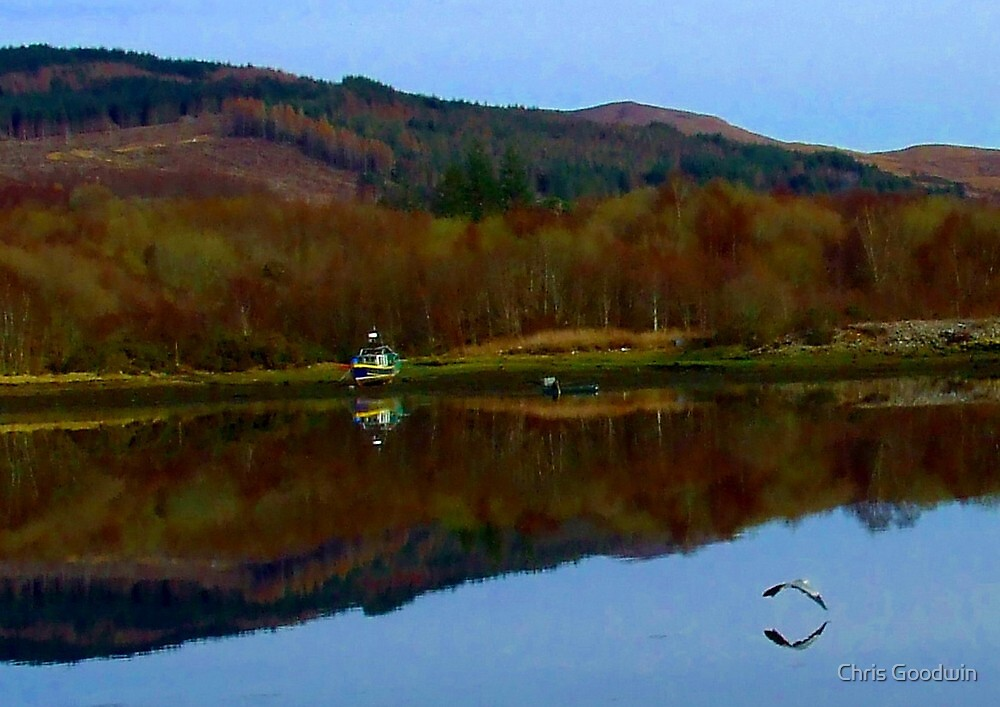 Reflections by Chris Goodwin
