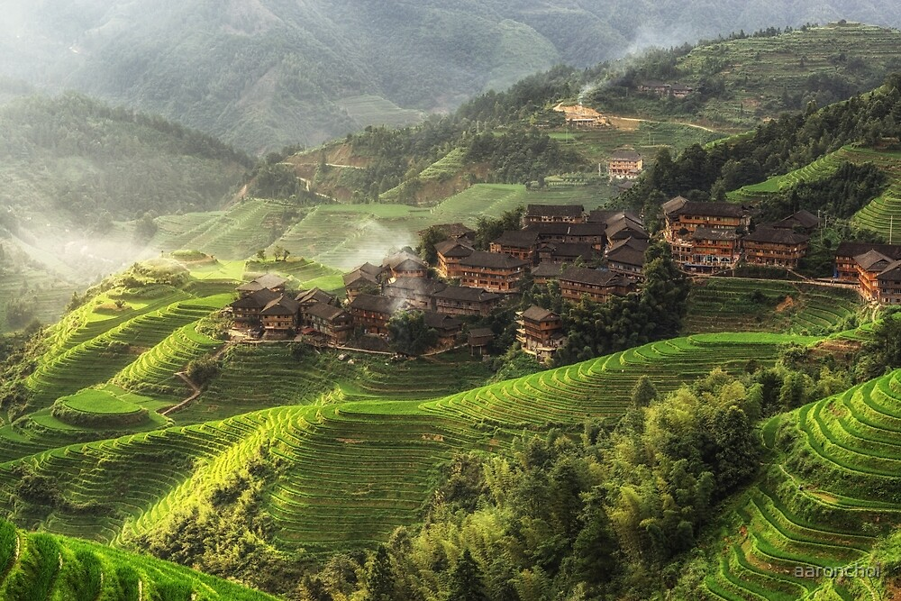 The valley of dragons by aaronchoi