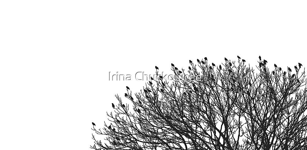 Winter Graphics by Irina Chuckowree