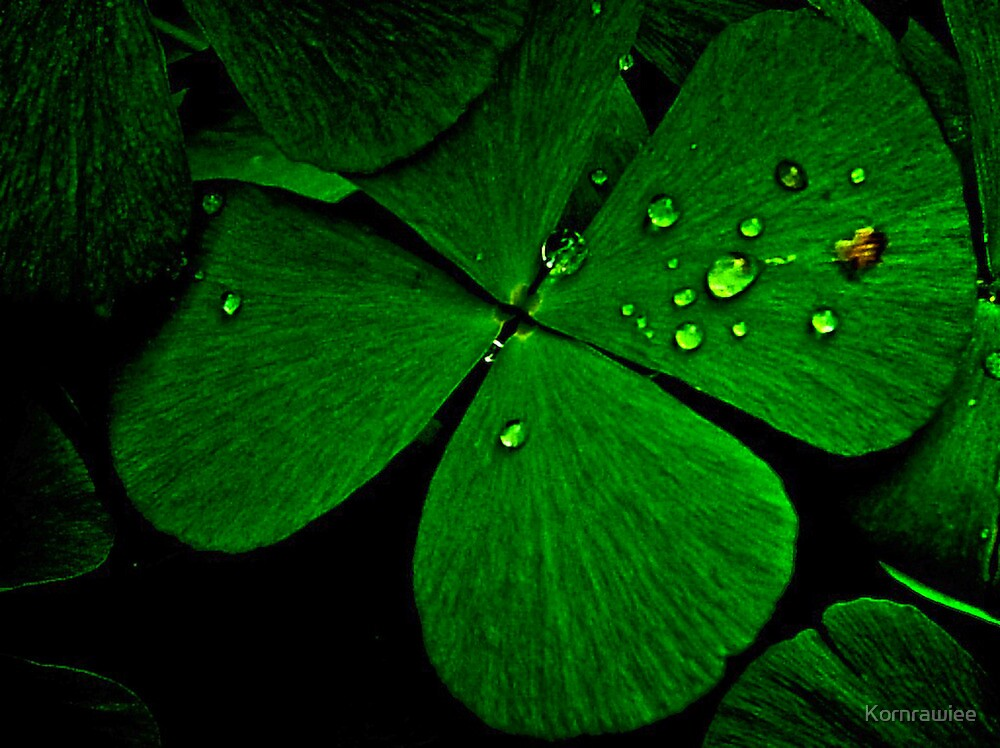 Green Luck: SOLD, On 5 Featured Works,  by Kornrawiee