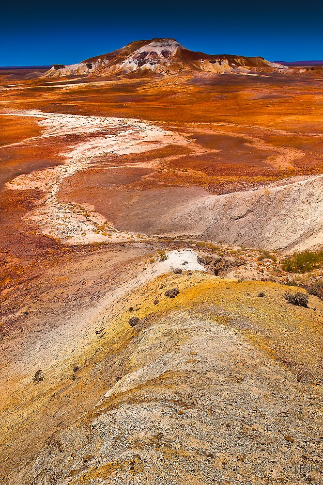 Painted Desert by Neil