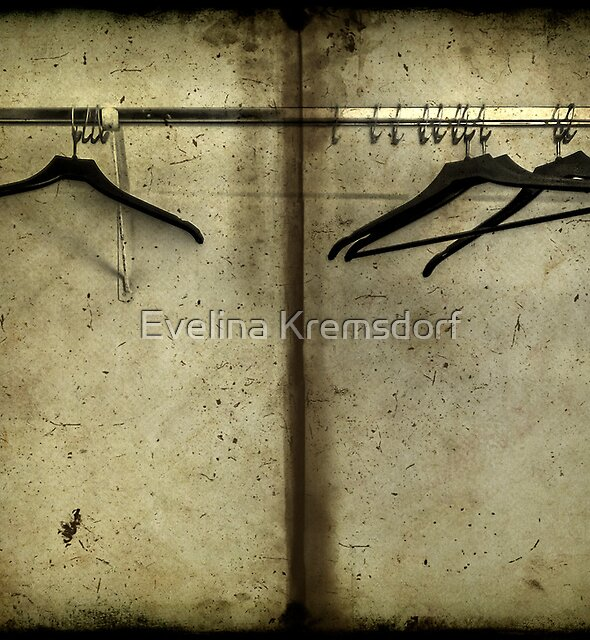 Closet Chronicles by Evelina Kremsdorf