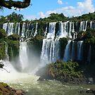 Iguazu Falls - Argentina by naturalnomad