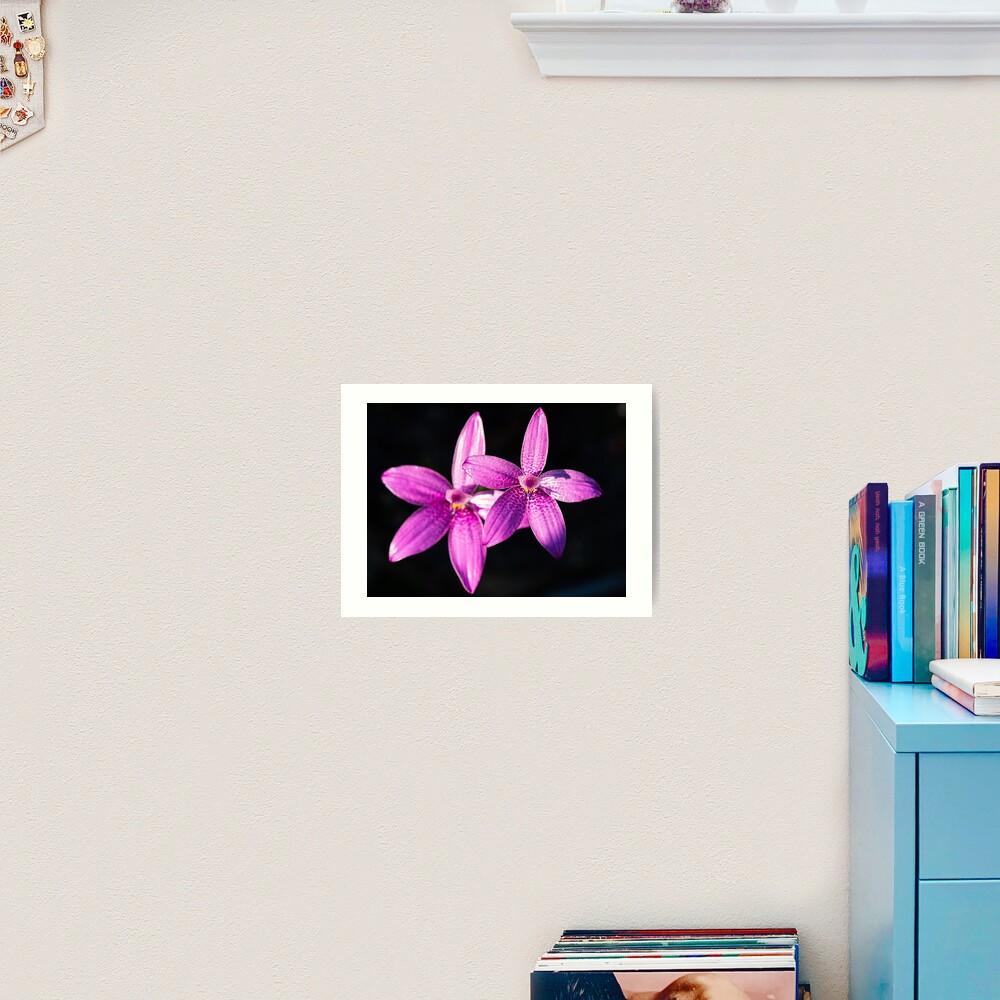 Pink Enamel Orchid Art Print