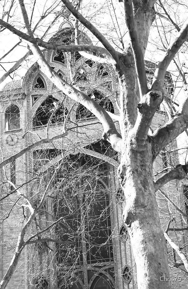 Paris Church Yard by Chris75