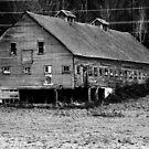 Long Barn in high contrast by arawak