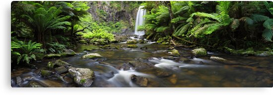 Hopetoun Falls, Otways, Great Ocean Road, Australia by Michael Boniwell