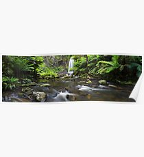 Hopetoun Falls, Otways, Great Ocean Road, Australia Poster