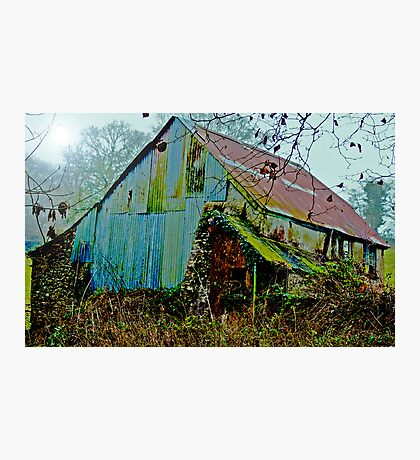 The Old Shed Photographic Print